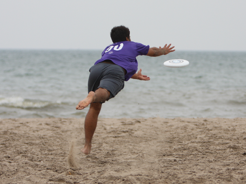 Layout catch - Copyright Bill Wong